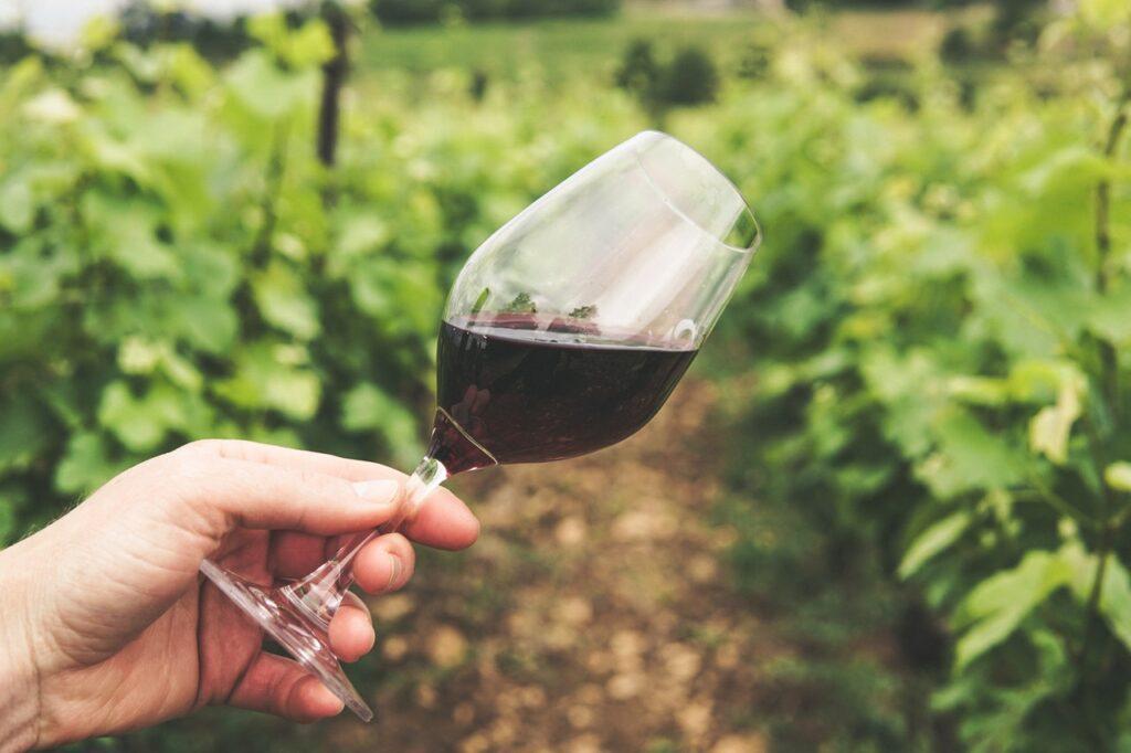 Un vino biodinámico debe presidir siempre una mesa